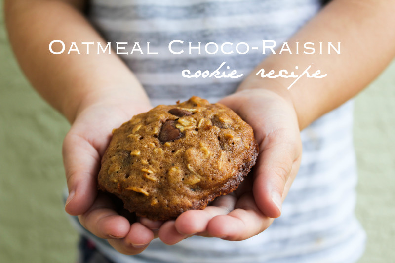 oatmeal raisin chocolate cookie recipe