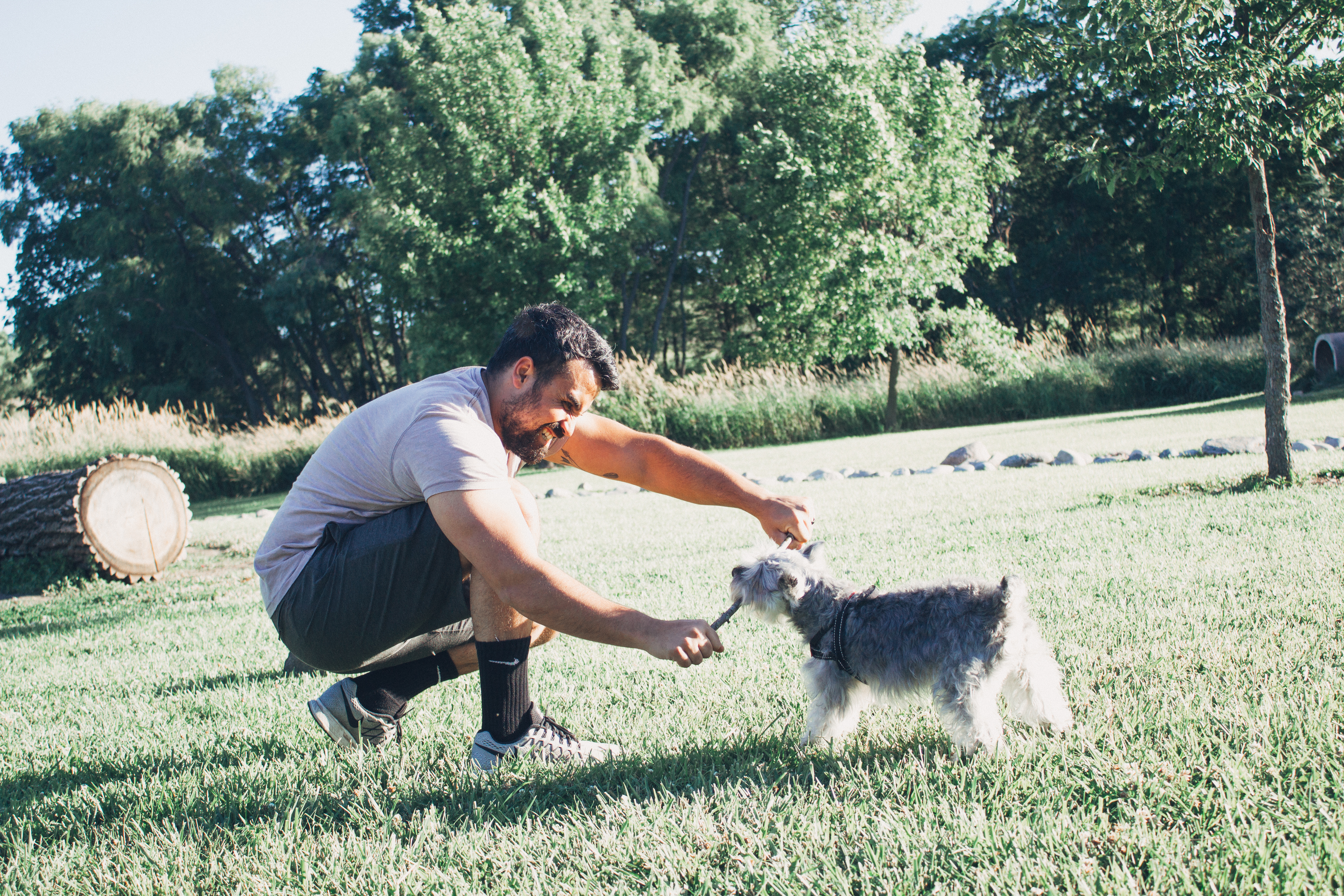 THREE TIPS ON ENJOYING SUMMER WITH YOUR POOCH